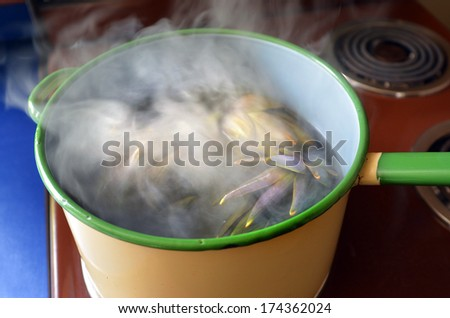 Cooking Artichoke in a pot. - stock photo