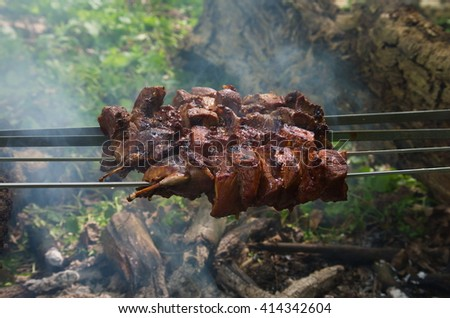 Cooking meat on barbecue, close-up in forest. Appetizing grilled meat on metal skewers outdoors at picnic. Preparation of meat slices in sauce on fire. Roasted meat on the coals as a background