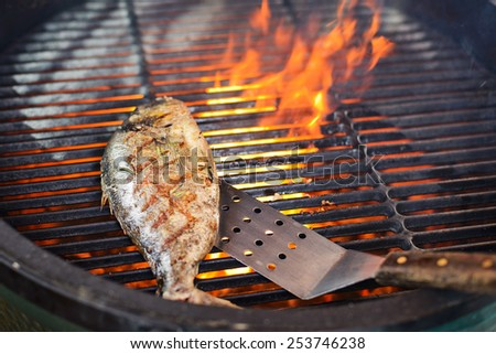 cooking process dorado fish on the grill braziers fried fish is ready to serving in the background is a fire in the brazier - stock photo