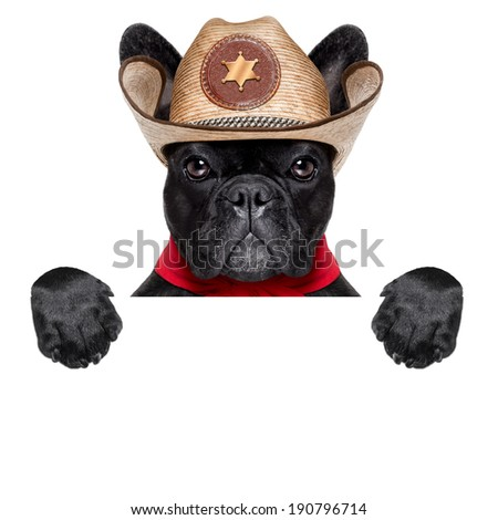cool cowboy dog with blank placard - stock photo