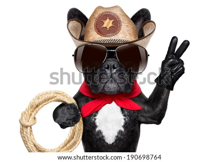 cool cowboy dog with peace or victory fingers and a rope - stock photo