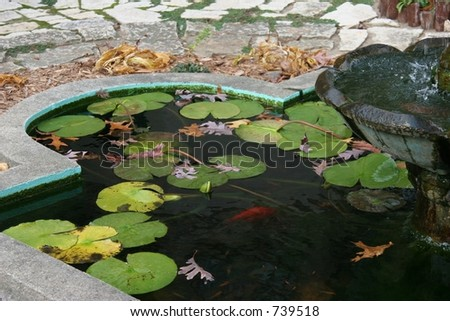 Cool shady deco koi pond with running bronze fountain. - stock photo