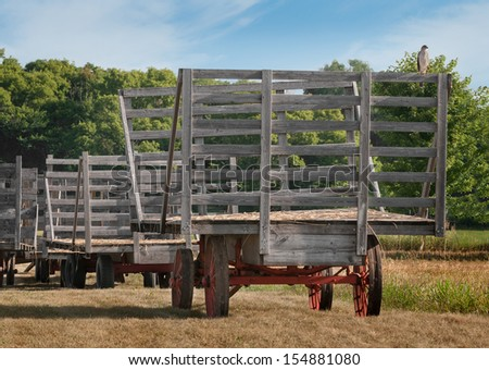 Cooper's Hawk (Accipiter cooperii) Sits on Empty Hay Rack - line of hay wagons - stock photo
