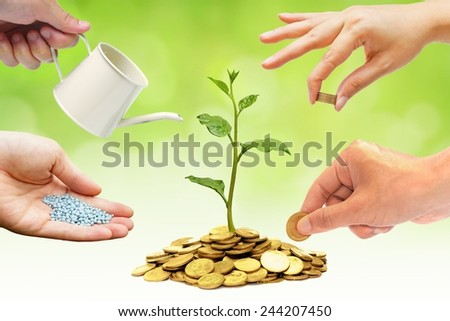 Cooperation - Hands helping planting trees growing on coins together with green background - Building business with csr and ethics - stock photo