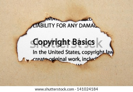 Copyright Law: Copyright in the 21st Century (The Library of Essays on ...
