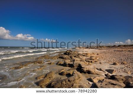 Coquina Rock Beach at Washington Oaks State Gardens, FL - stock photo