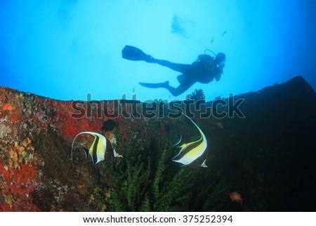 Coral, fish and scuba diver - stock photo