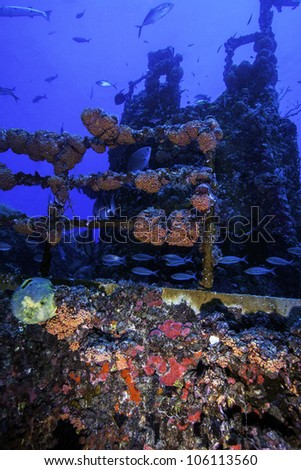 Coral growth on the USCG Duane in Key Largo, Florida. An intentionally sunken shipwreck in the 1980's in the John Pennekamp State Park. With a blue water background and fish swimming around the wreck. - stock photo