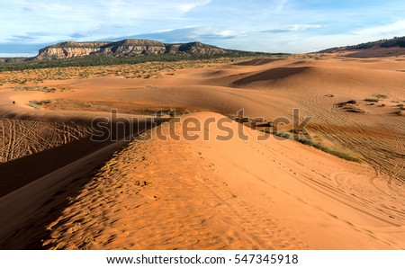 Coral Pink Sand Dunes in Arizona/Utah in the moring, Landscape Photography