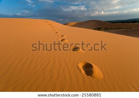 Coral Pink Sand Dunes, Utah - stock photo