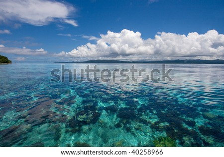 Coral reef from above