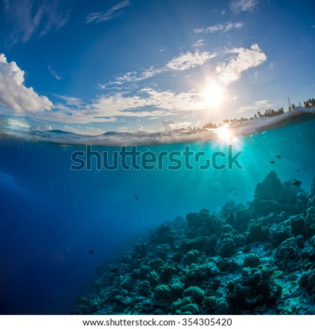Coral reef in tropical ocean under water surface. Sunbeams light running through aquatic ripples. Beautiful design postcard on blue marine background. - stock photo