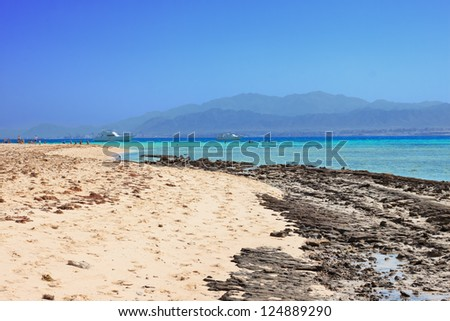 Coral reef of a Red Sea - stock photo