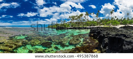 Coral reef perfect for snorkeling on south side of Upolu, Samoa Islands.