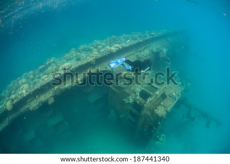 Corals and other invertebrate growth have begun to cover a shallow shipwreck in Palau. Wrecks can act as artificial reefs, providing habitat for marine species.