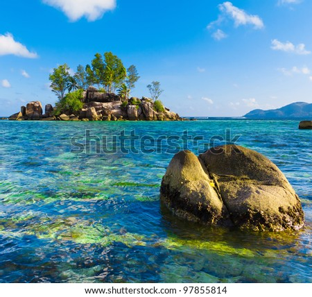 Corals Water Sea - stock photo