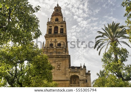 Cordoba (Andalucia, Spain): courtyard of the medieval cathedral known as mezquita-catedral, with various trees