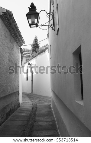 Cordoba (Andalucia, Spain): old typical street in the Juderia. Black and white