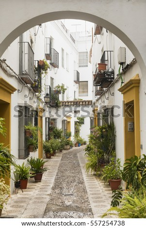 Cordoba (Andalucia, Spain): old typical street in the Juderia with plants and flowers