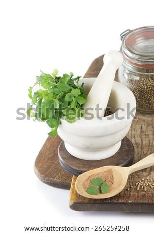 Coriander  fresh greens and grains cilantro cilantroisolated on white - stock photo