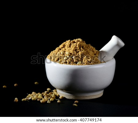 Coriander Powder and seeds with mortar and pestle on black background. - stock photo