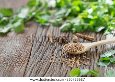 Coriander Seed Stock Images Royalty Free Images Vectors