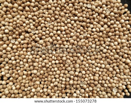 Coriander seed on black background