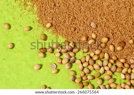 Coriander seeds and Powdered coriander on green background - stock photo