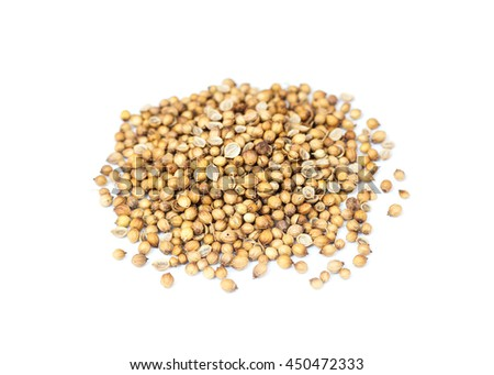 Coriander seeds isolate on white background