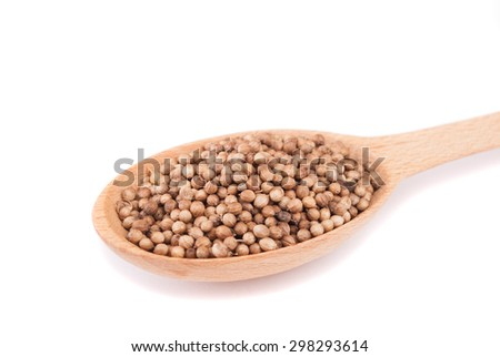 Coriander spoon in closeup isolated on white background. - stock photo