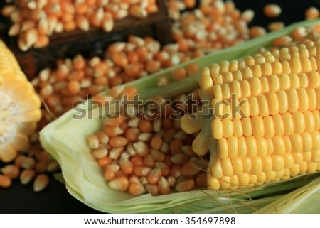 Corn and dried seeds