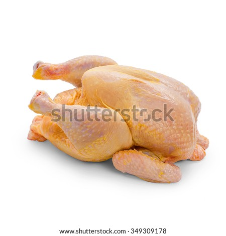 Corn-fed chicken on white background, close up - stock photo