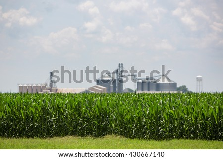 Corn Field and Silos in Mer Rouge, Louisiana  - stock photo