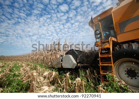 corn harvest on farmland in brazil - stock photo