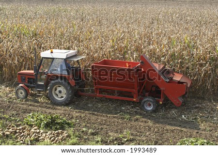 COrn harvester - stock photo