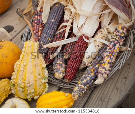 Corn holiday decorations - stock photo