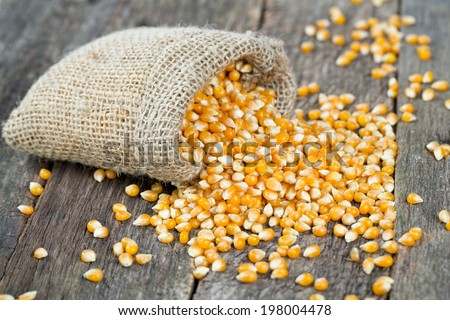 corn in burlap bag on wooden surface - stock photo