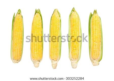 corn isolated - stock photo