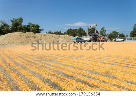 Corn mills in Thailand - stock photo