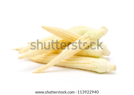 Corn on a white background (Zea mays Linn.).