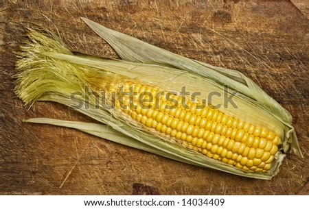 Corn on the cob, isolated on wooden table.