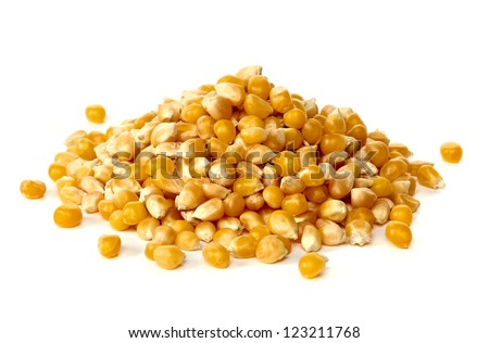 Corn pile on white background - stock photo