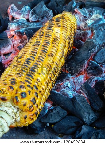 Corn roasting  barbecue on coal fire for authentic test - stock photo