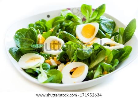 Corn Salad with Egg   - stock photo