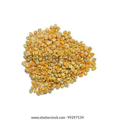 Corn seeds for animal feed isolated on white background - stock photo