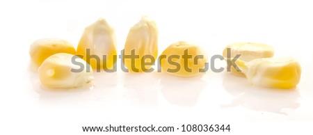 corn seeds isolated on white background - stock photo
