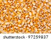Corn seeds texture - stock photo
