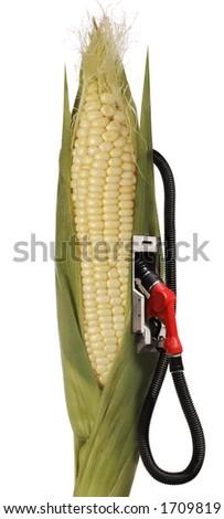corn stalk ethanol gas pump - stock photo
