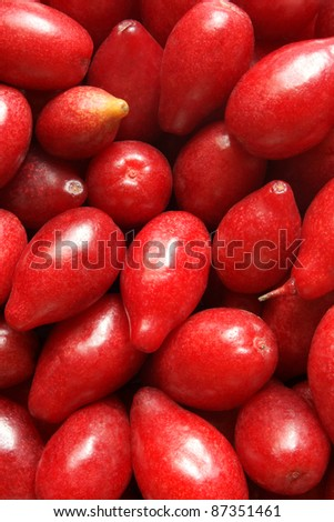 Cornelian cherry, for backgrounds or textures