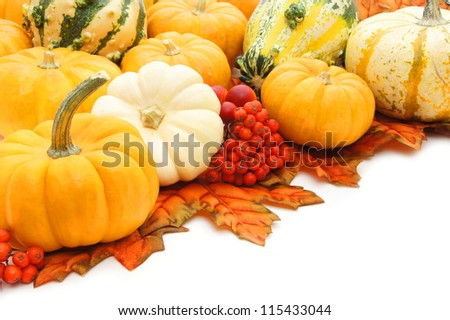 Corner arrangement of autumn pumpkins, leaves and gourds over white - stock photo